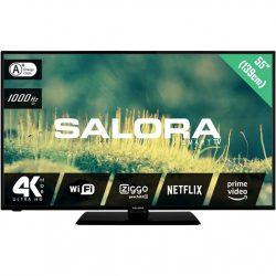 Salora 55EUS2204 TV